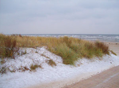 Schnee Insel usedom